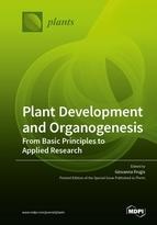 Plant Development and Organogenesis