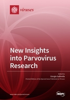 New Insights into Parvovirus Research