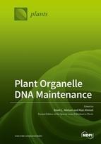 Plant Organelle DNA Maintenance