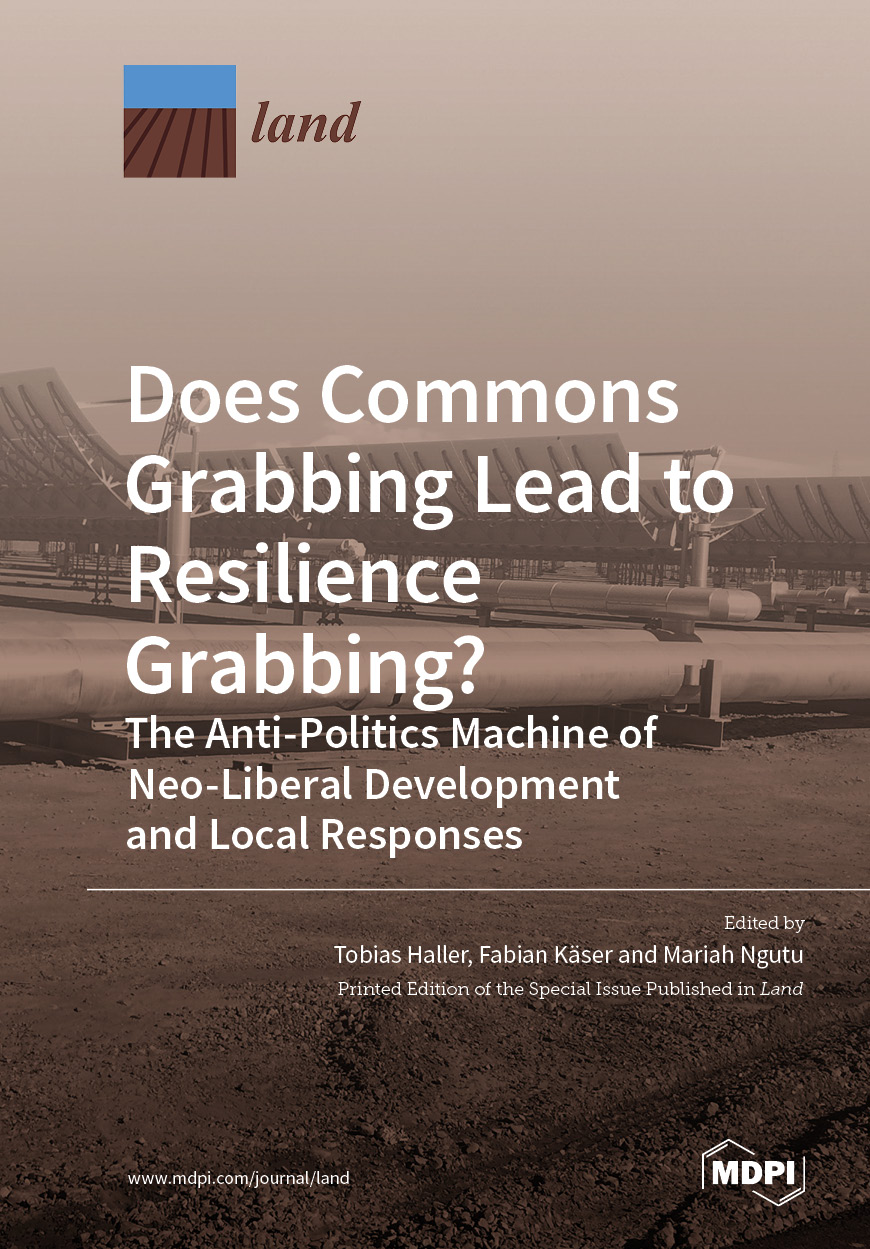 Does Commons Grabbing Lead to Resilience Grabbing?