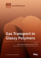Special issue Gas Transport in Glassy Polymers book cover image