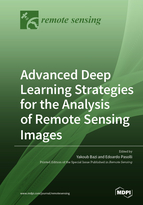 Special issue Advanced Deep Learning Strategies for the Analysis of Remote Sensing Images book cover image