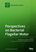Perspectives on Bacterial Flagellar Motor