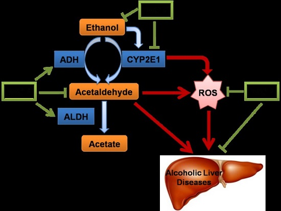 Strychnos nux vomica d6 dosierung ciprofloxacin