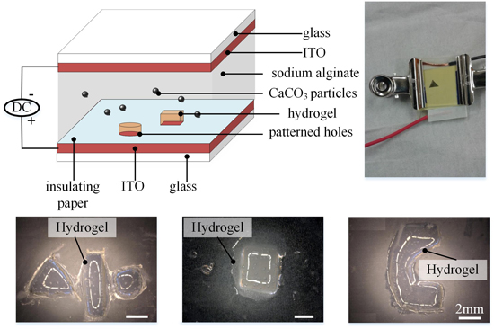 electrodeposition thesis