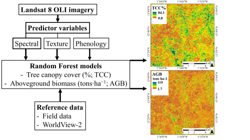 Remote Sensing | Free Full-Text | Mapping Tree Canopy Cover and Aboveground Biomass in Sudano-Sahelian Woodlands Using Landsat 8 and Random Forest  sc 1 st  MDPI & Remote Sensing | Free Full-Text | Mapping Tree Canopy Cover and ...