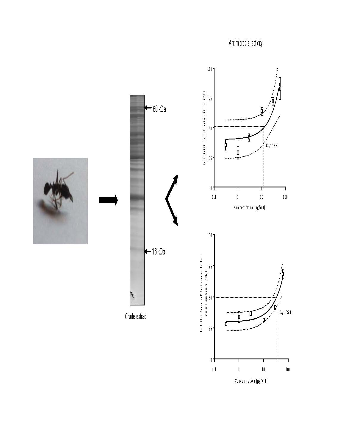 Toxins special issue arthropod venoms open pooptronica