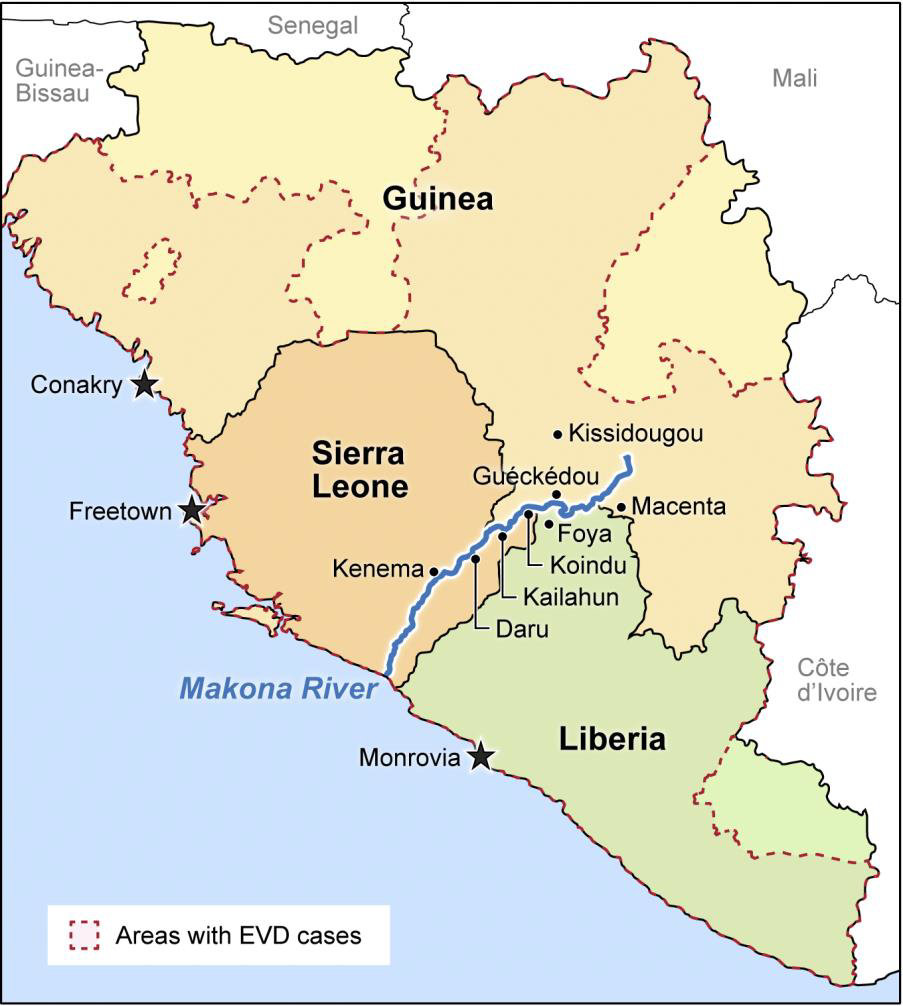 an analysis of ebola viruses This study provides an analysis of the impact of the ebola virus disease outbreak  on agricultural market chains seven market chains were selected based on.