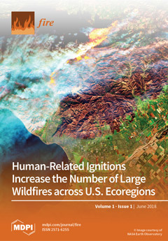Issue 1 (June) cover image