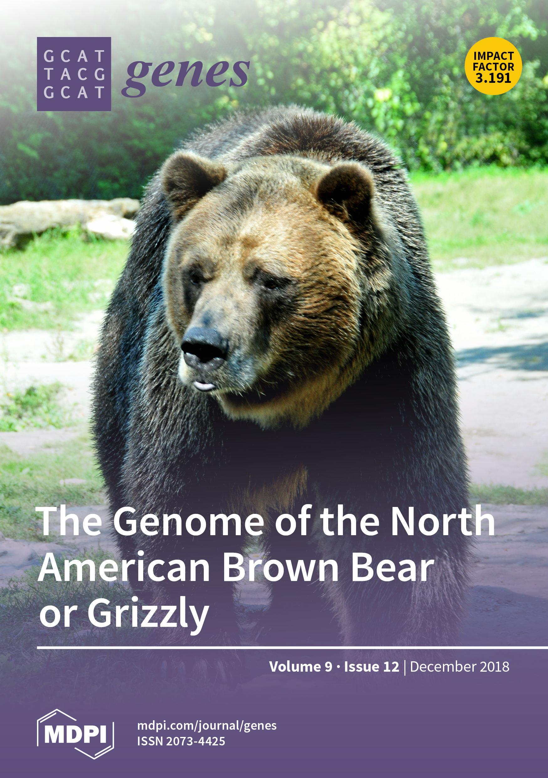 ea8d4a2f8b7 The genome of the grizzly bear Samson was sequenced at BC Cancer's Michael  Smith ...