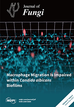 Issue 3 (September) cover image